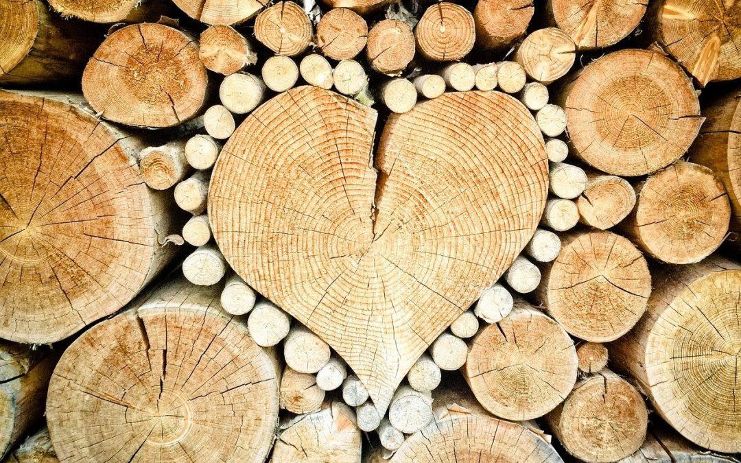 Verschillende soorten hardhout